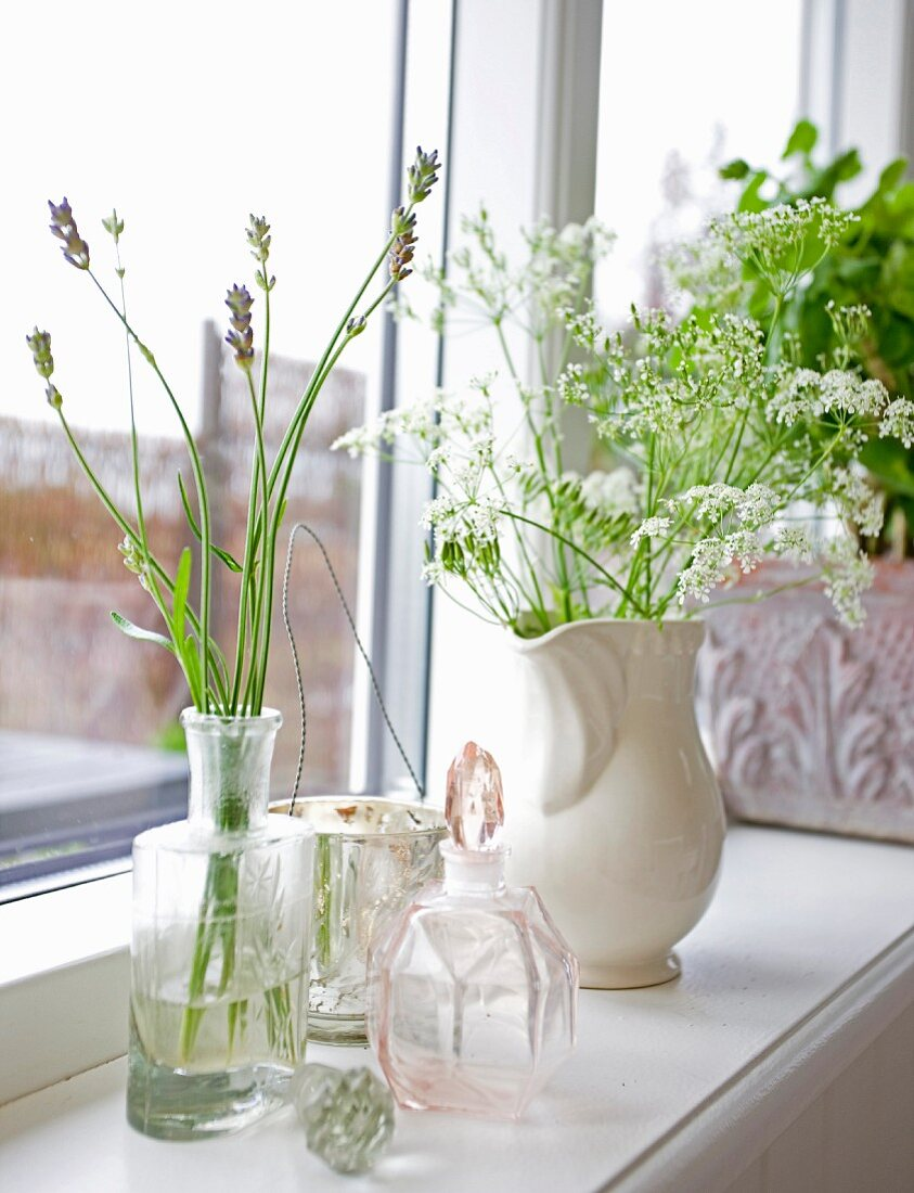 Sprigs of lavender in vintage glass bottle and white china jug of yarrow on windowsill