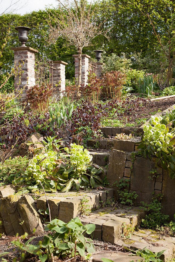Garten am Hang, Treppe aus Pflastersteinen und Stützmauer