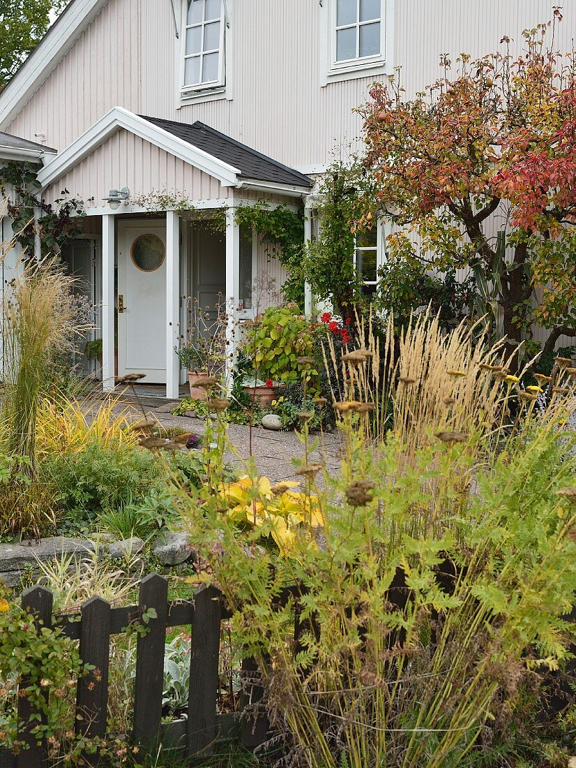 Autumnal herbaceous borders outside wooden house