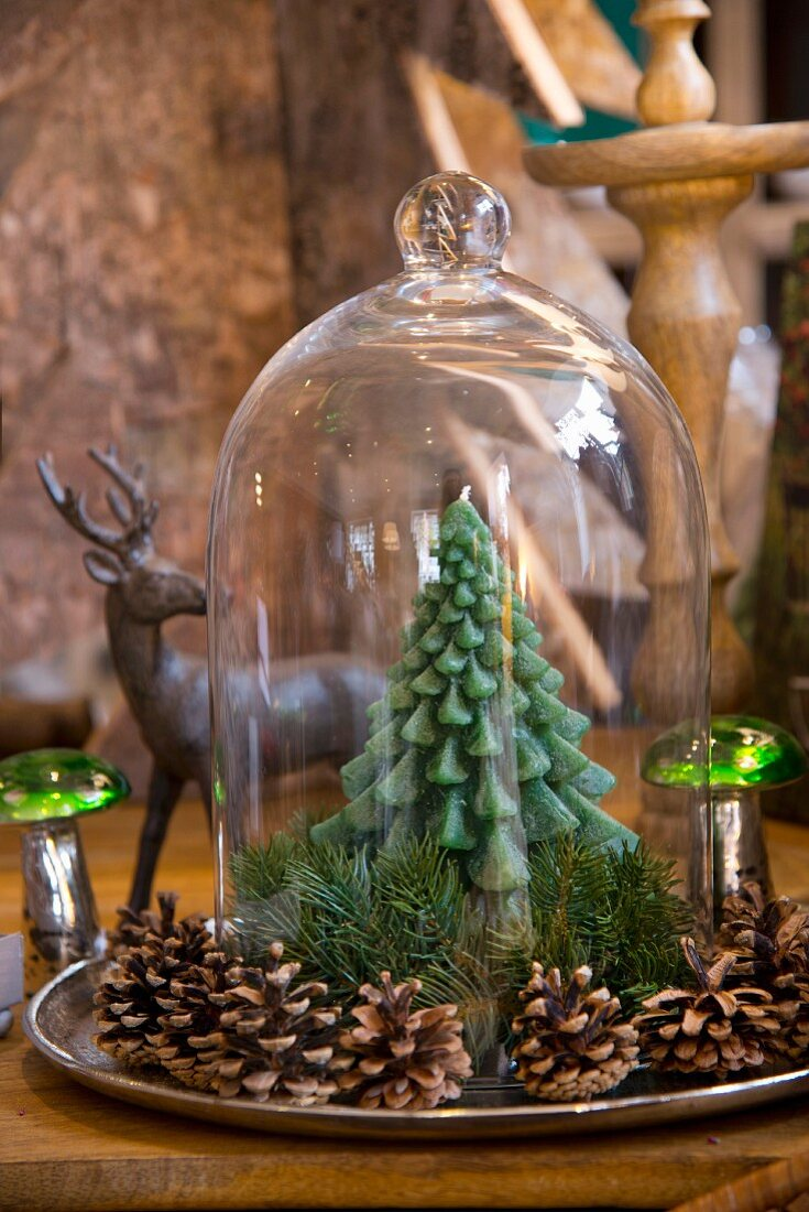 Pine-tree candle under glass cover surrounded by pine cones