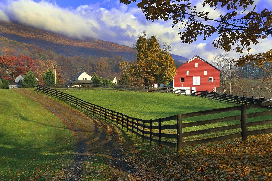 View across fenced meadow of Falu-red house in mountainous landscape