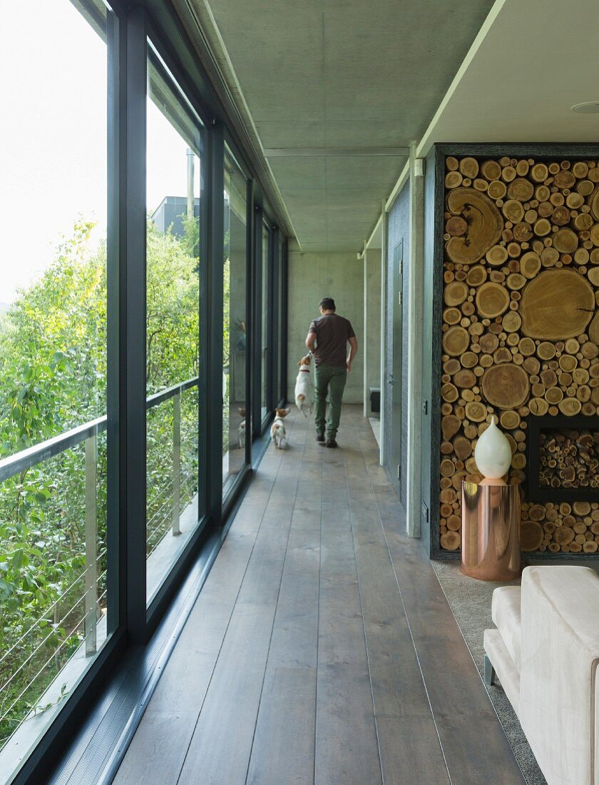 Hallway between glass wall and decorative wooden wall with man and dogs at far end