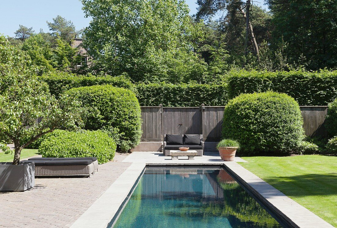 Pool in well-tended summer garden