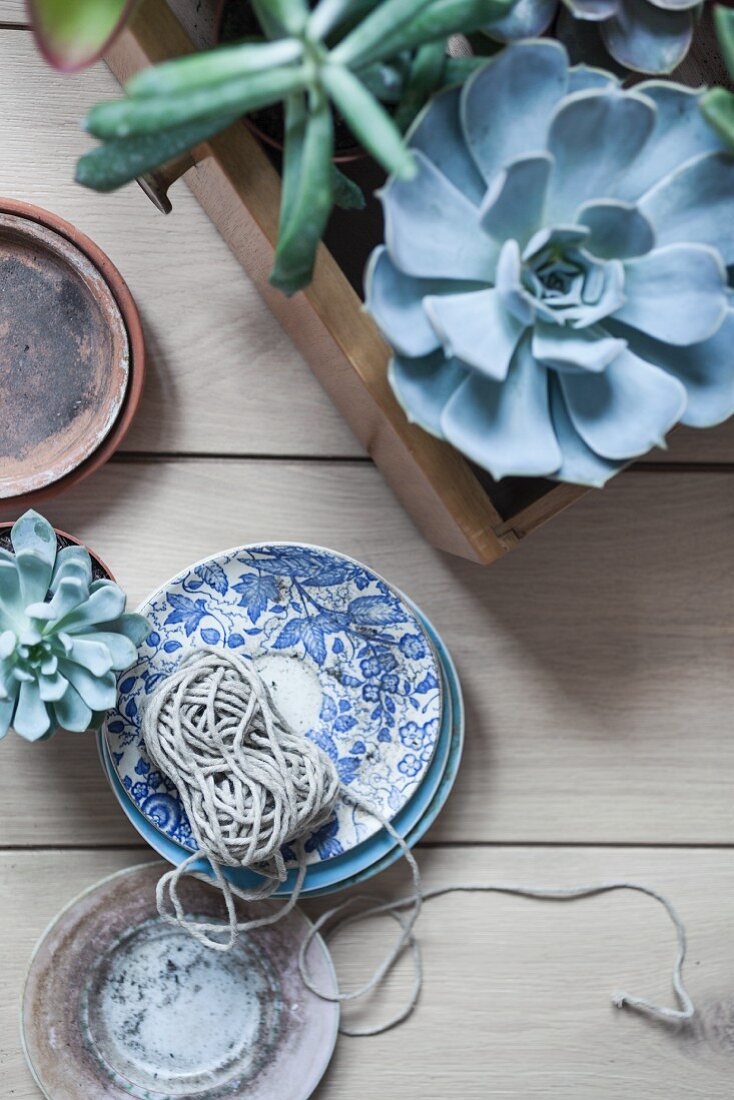 Succulents in wooden crate next to ball of string on stacked saucers