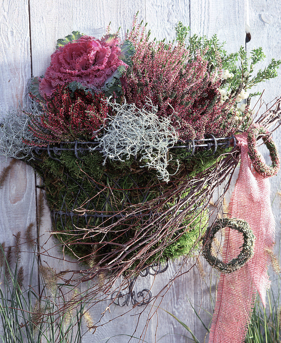 Stainless steel wire basket, Pernettya macronata, Calluna vulgaris