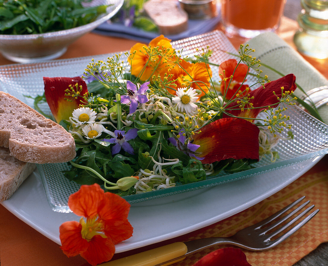 Rocket sprout salad with Tropaeolum