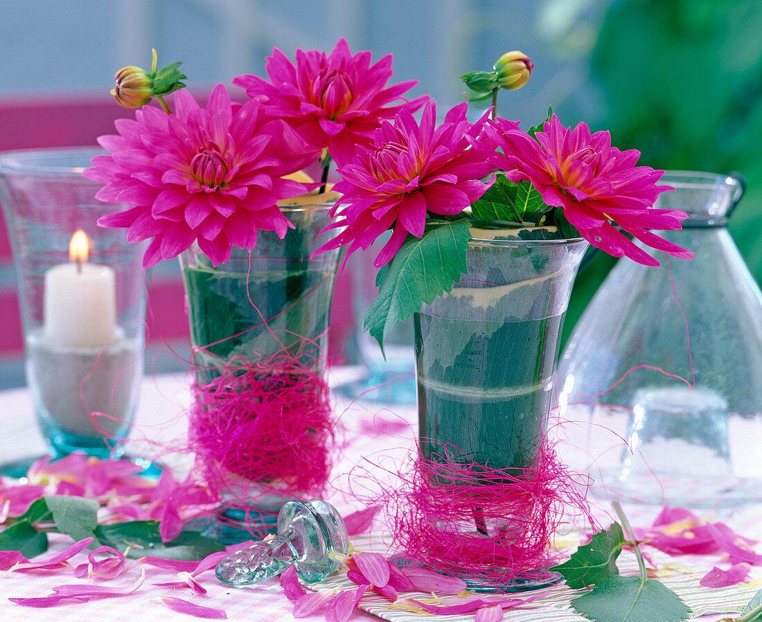 Dahlia (pink dahlia)