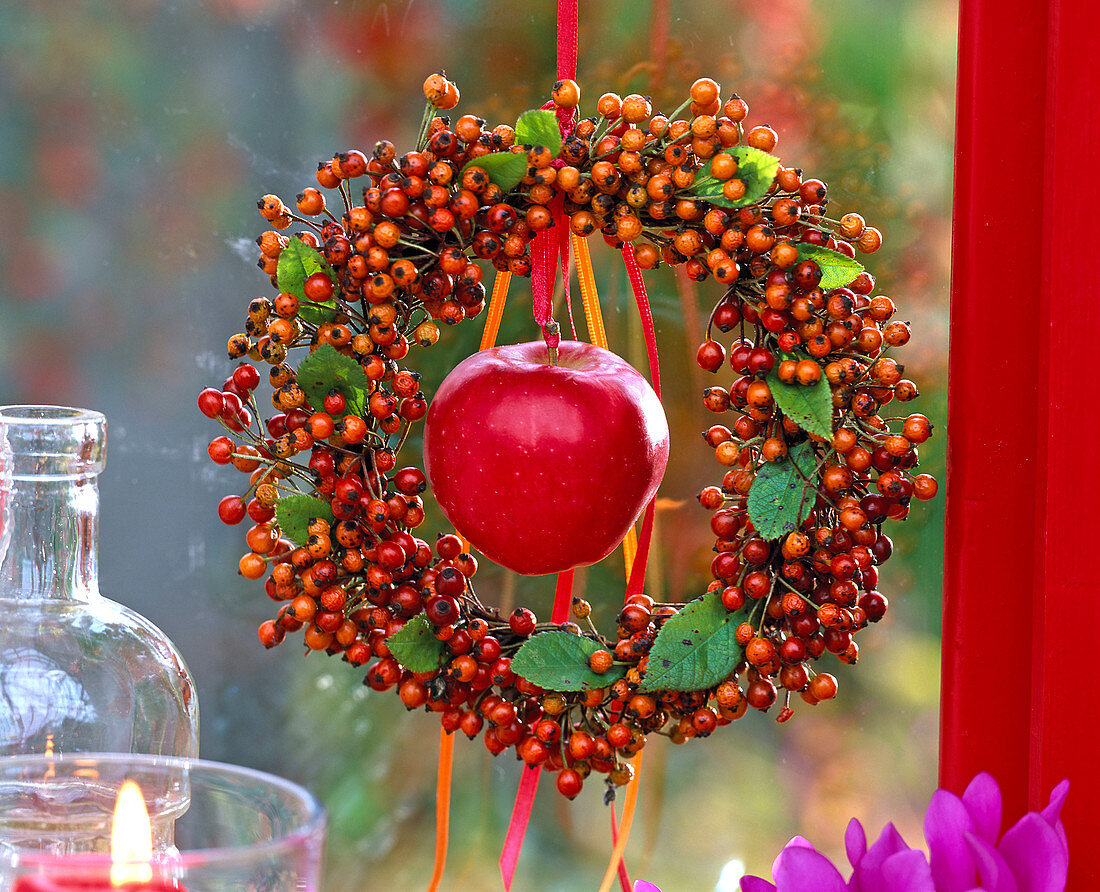 Wreath of Rosa multiflora, Malus on the red ribbon