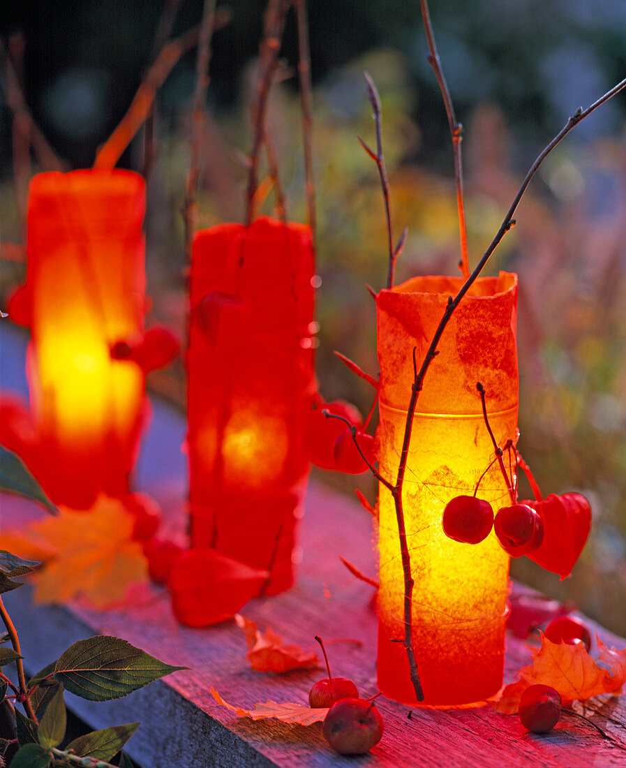 Lanterns With Orange Tissue Paper Buy Image 12135662 Living4media