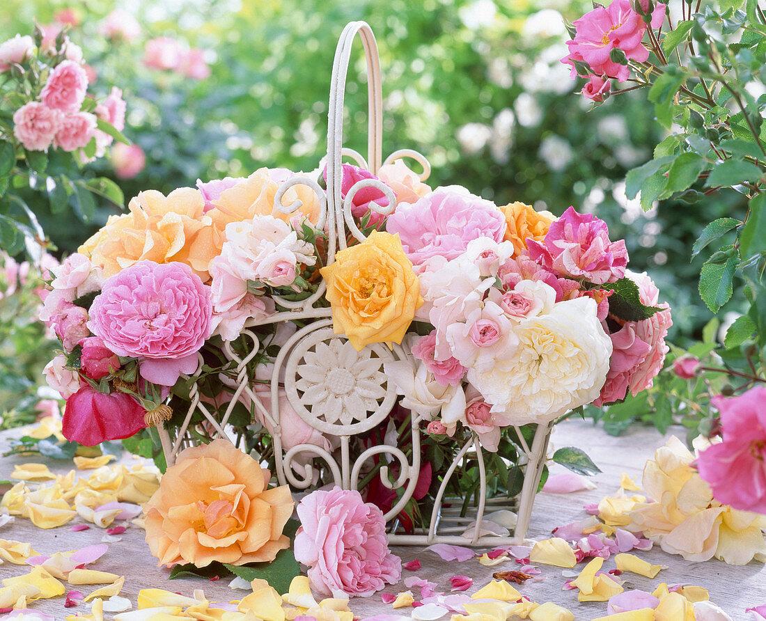 Freshly cut roses in a nostalgic white metal basket