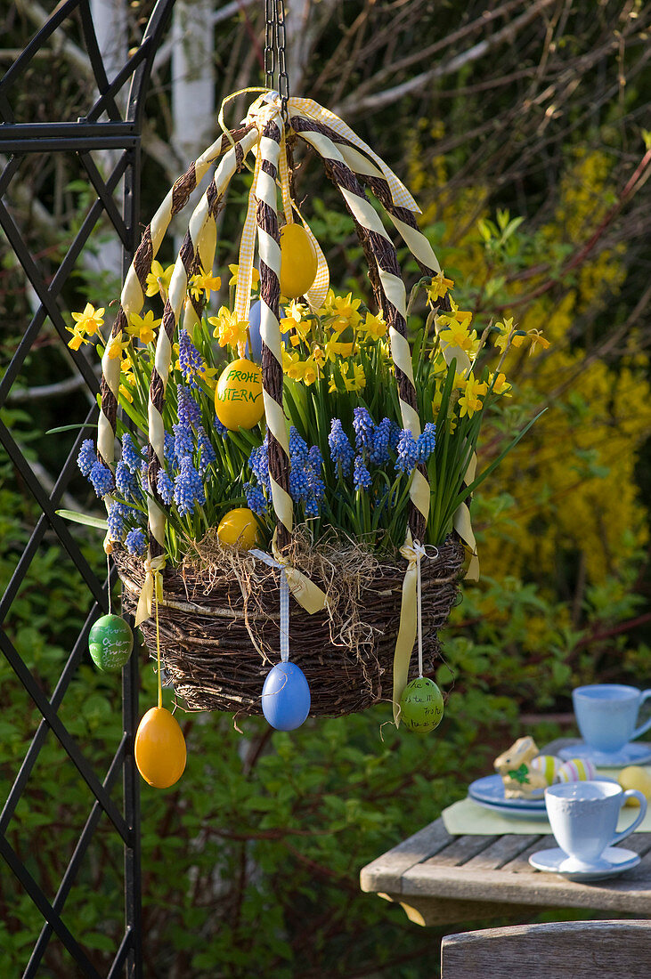 Easter basket of birch-brushed rice planted with Narcissus 'Tete a Tete'