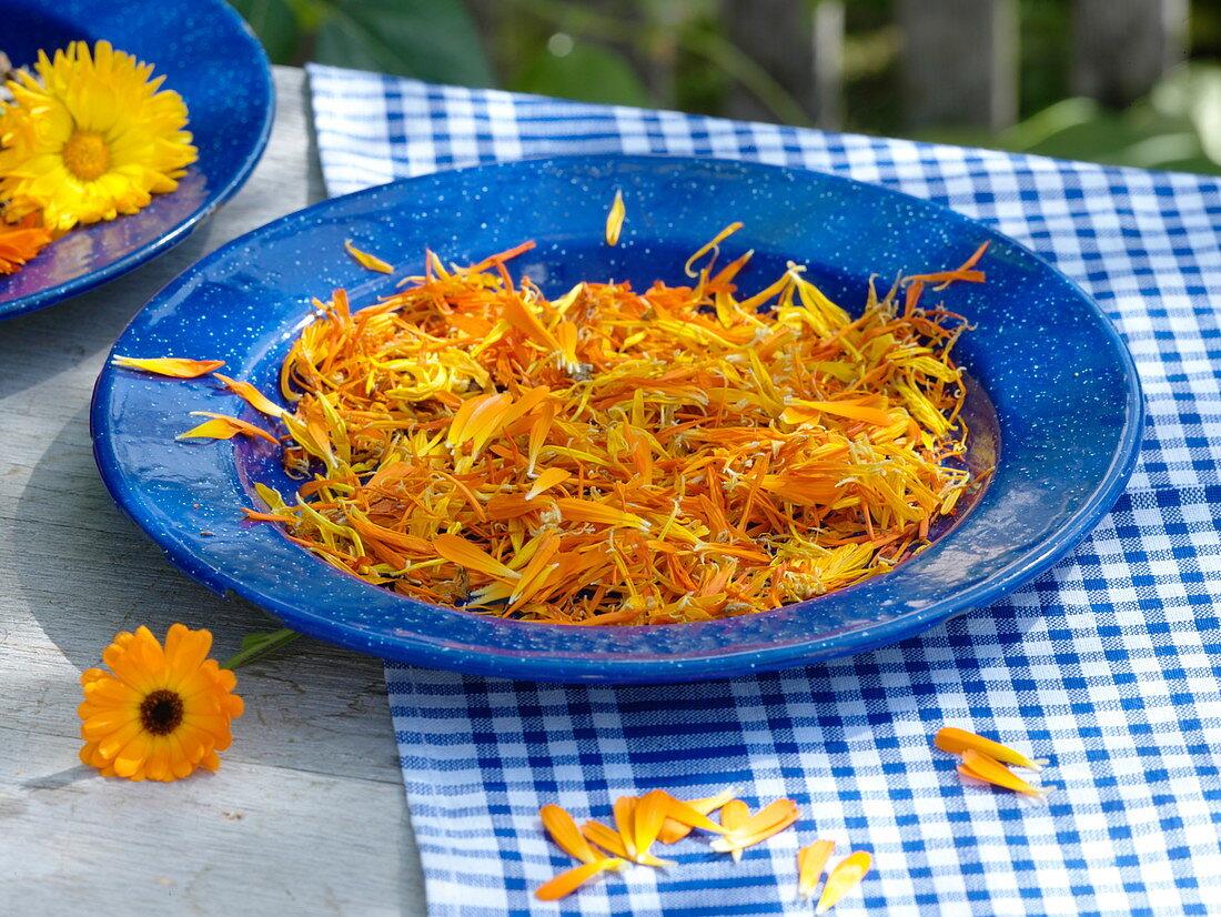 Dry petals of marigolds