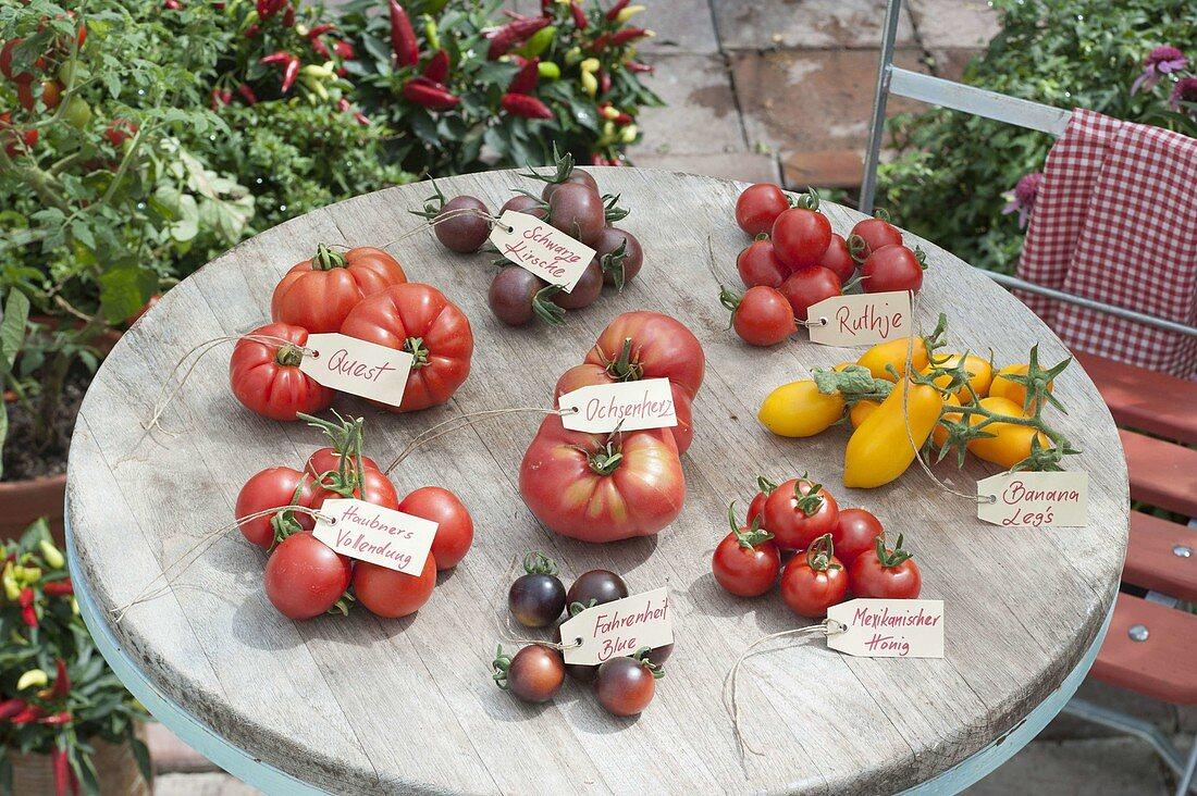 Tomato tray on round patio table
