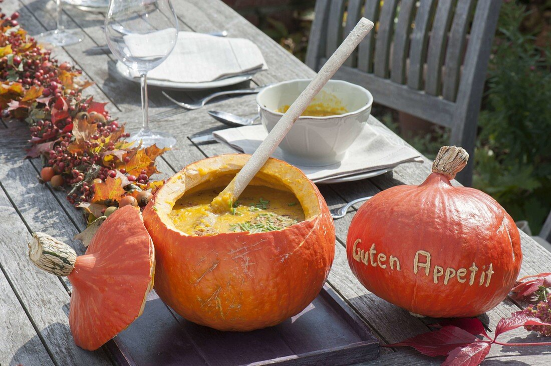 Pumpkin soup in Hokkaido pumpkin (Cucurbita pepo)