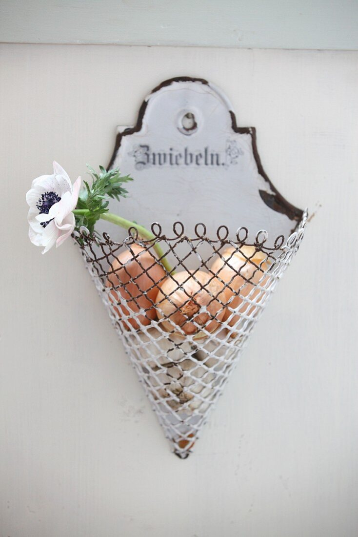 Anemone and onions in antique, enamel onion basket