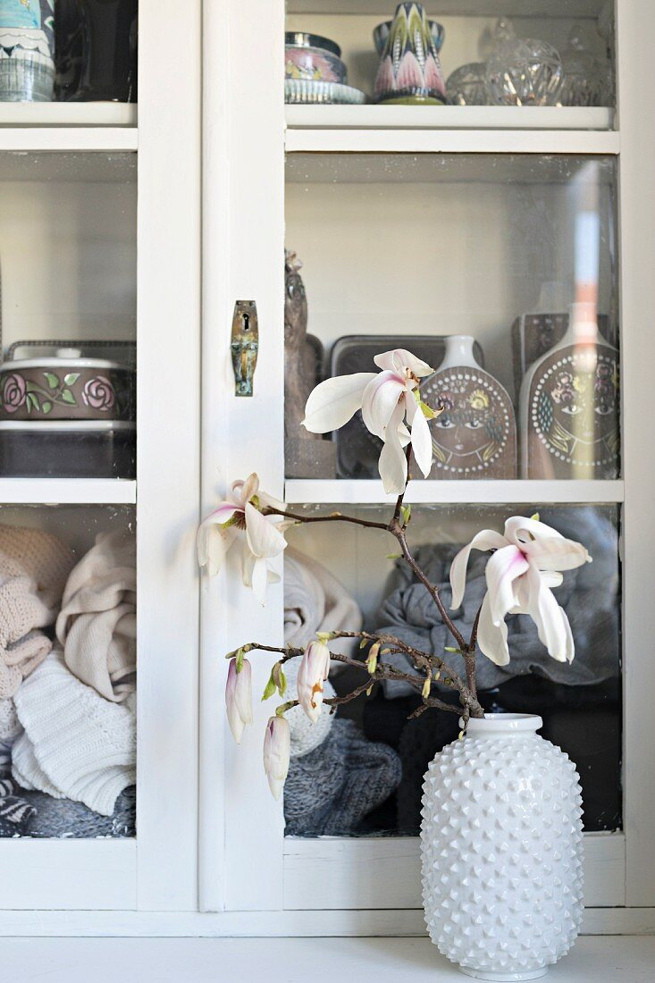 Branch of flowering magnolia in white vase with structured surface inn front of display case