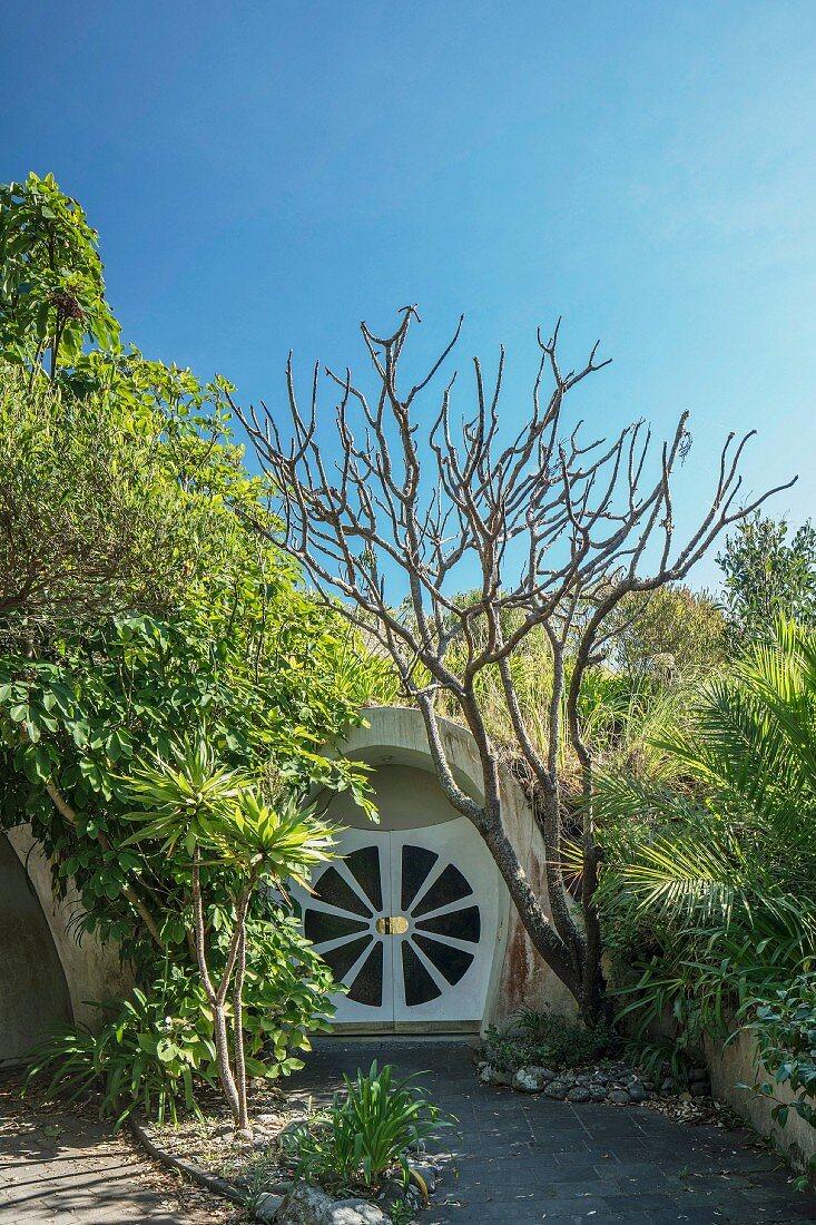 Entrance to semi-subterranean eco dome