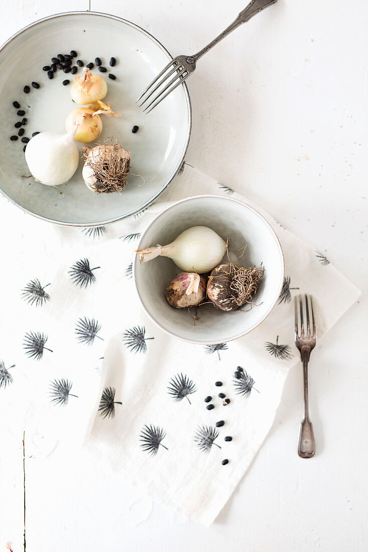 Bowl and plate of onions and garlic on printed cloth