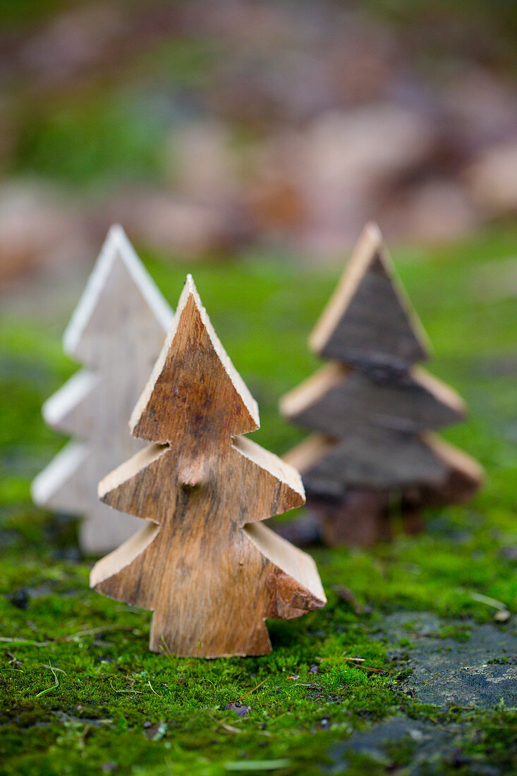 Miniature woodland of wooden Christmas trees on mossy surface