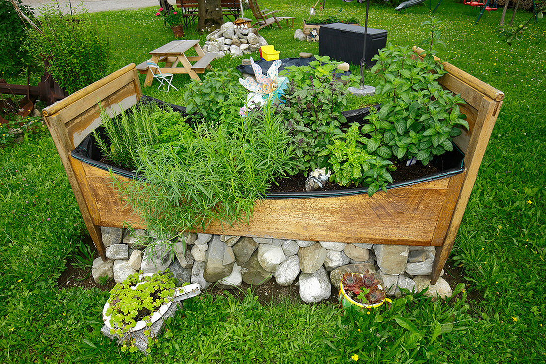 Old Farm Bed Planted As A Herb Garden