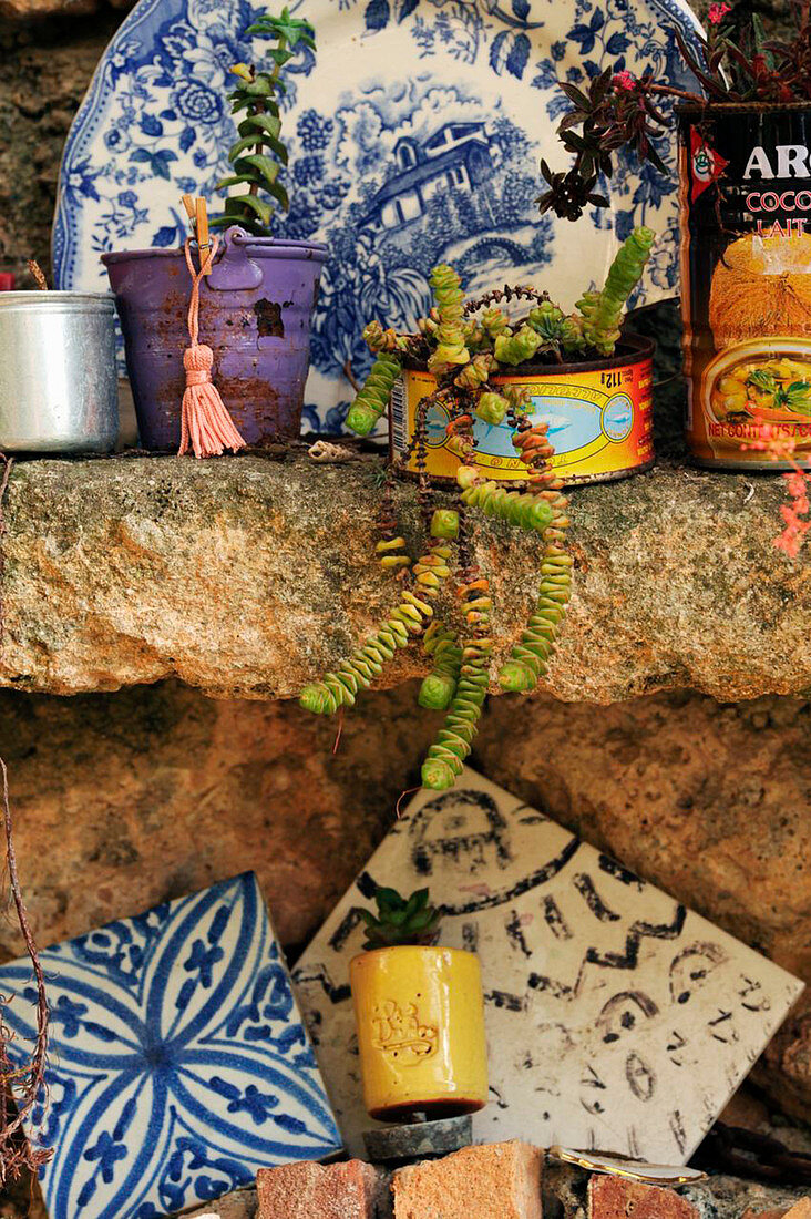Tiles, succulents and decorative plate on rustic stone shelf
