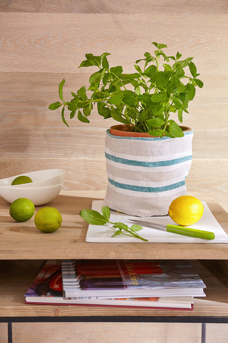 A DIY linen bag for a herb pot