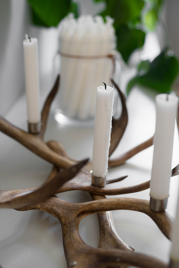 Candle holder made from deer antlers