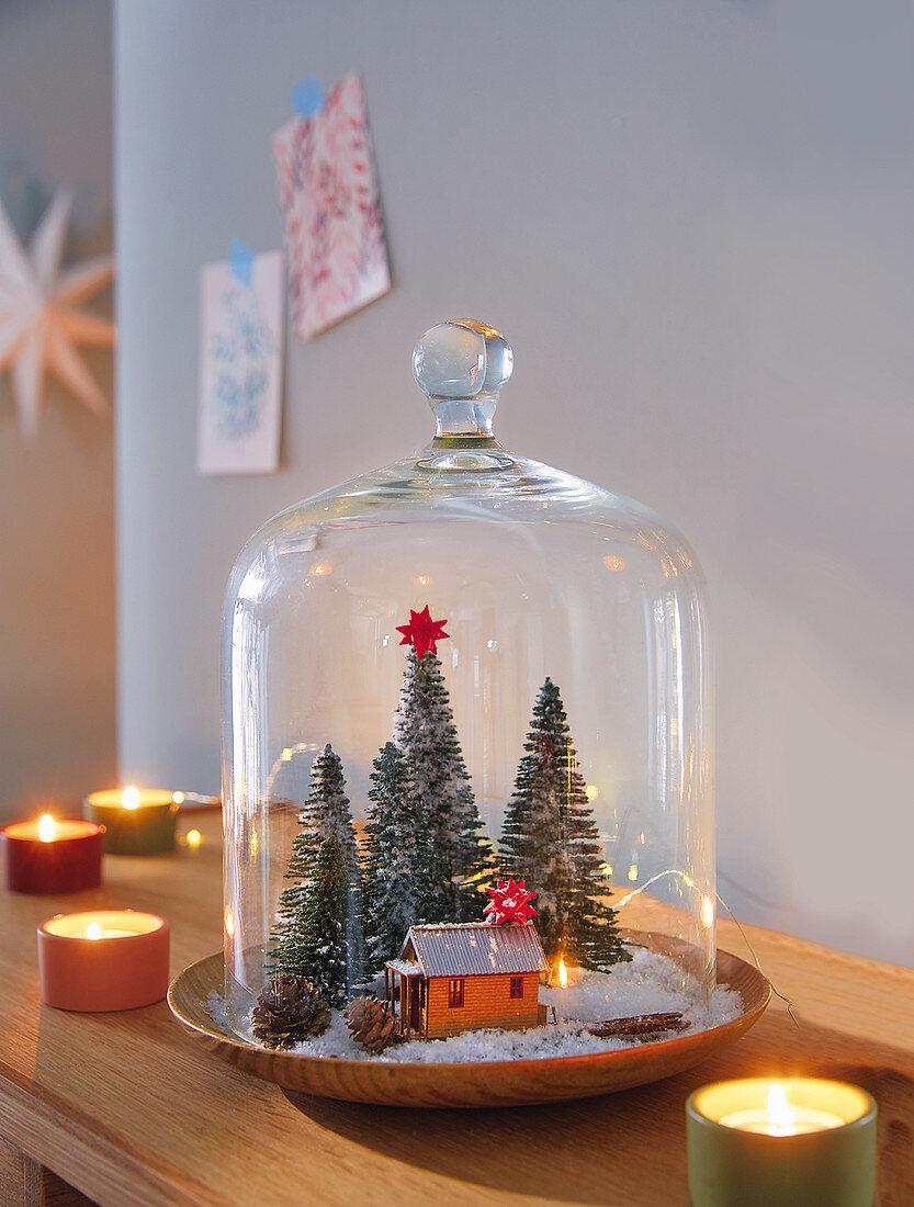 A mini winter landscape under a glass cloche