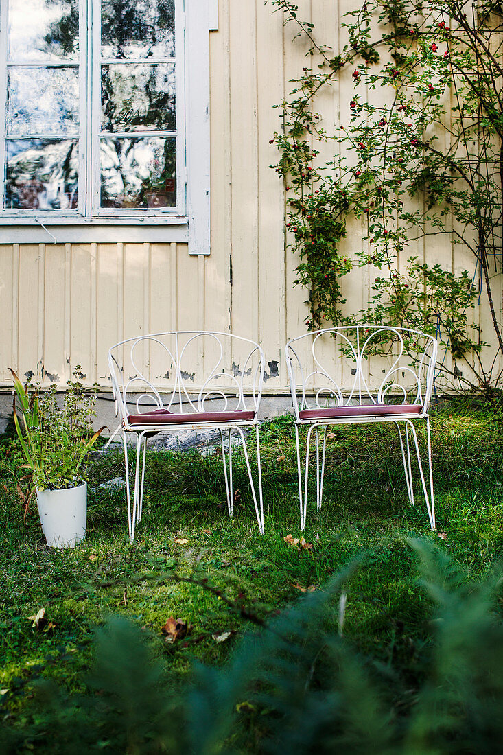 Vintage metal chairs next to potted plant in garden