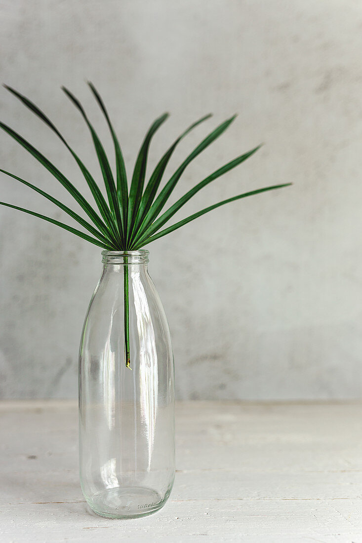 Palm leaf in glass bottle