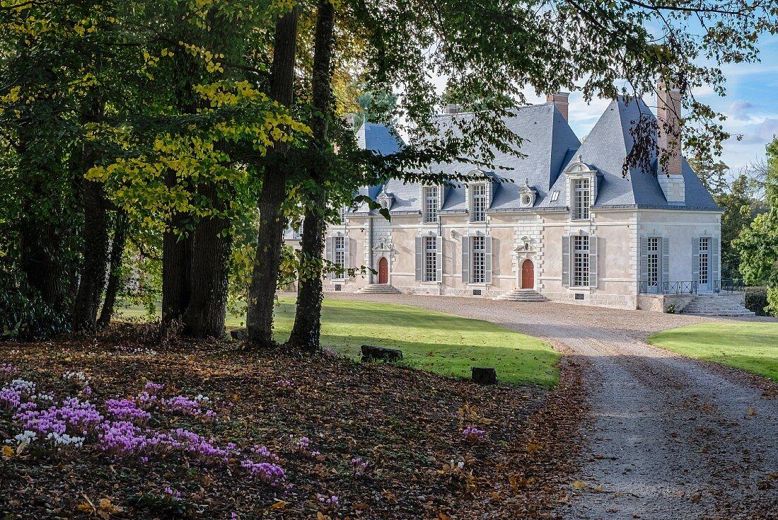 Drive leading through parklands to Château des Grotteaux