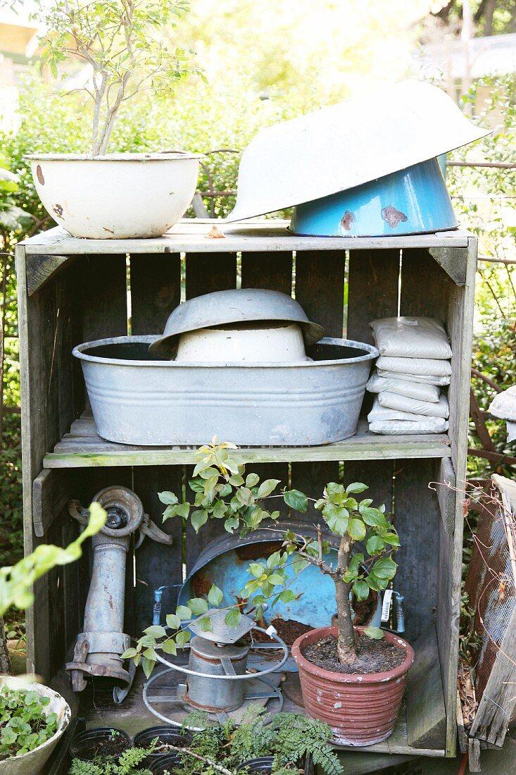 Various enamel bowls, zinc tub and bonsai tree on vintage wooden shelves in garden