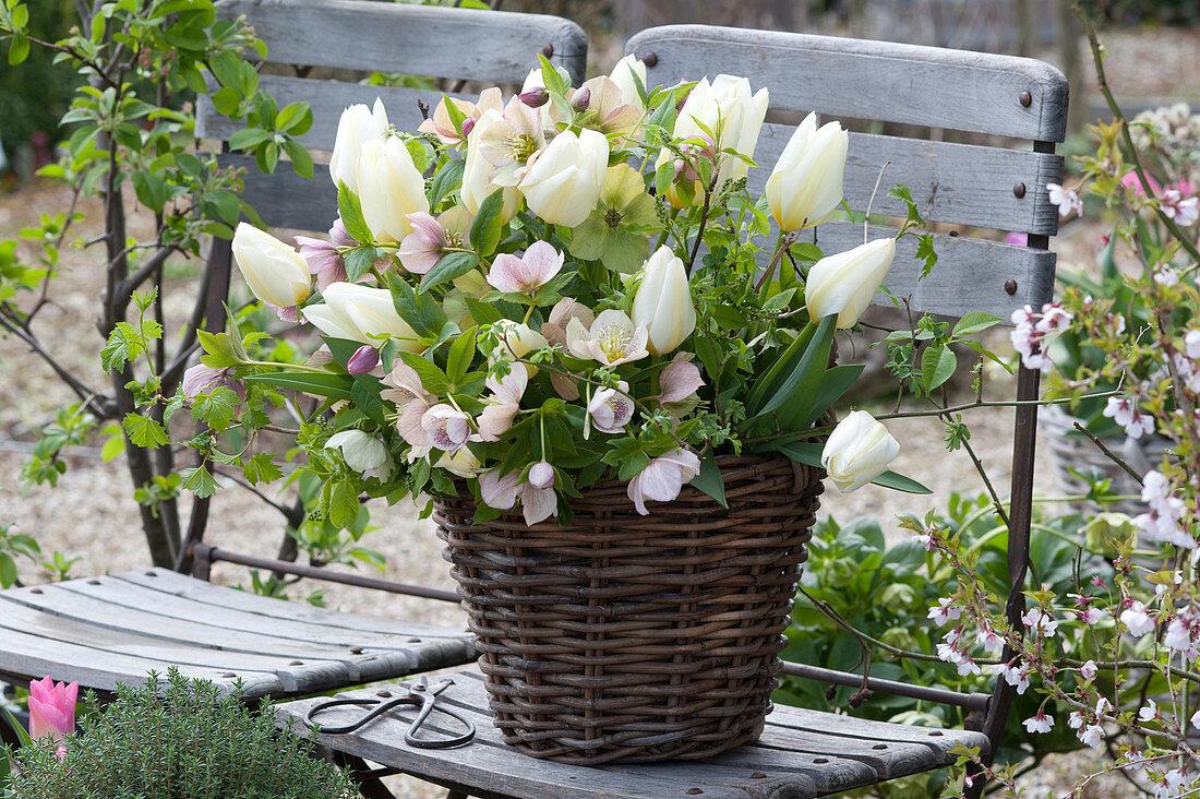 Green-white bouquet of Tulipa 'Purissima', Helleborus orientalis