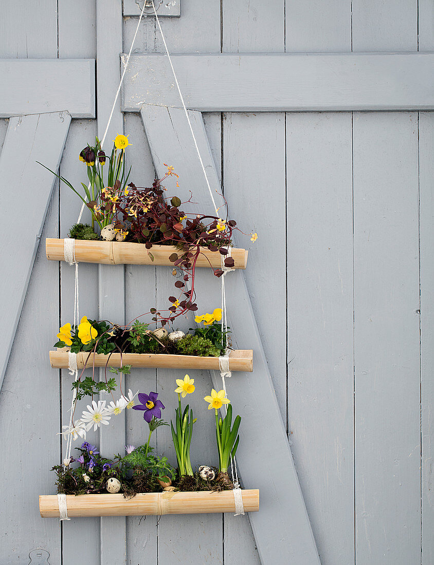 Homemade hanging basket made of bamboo with spring flowers on the barn door