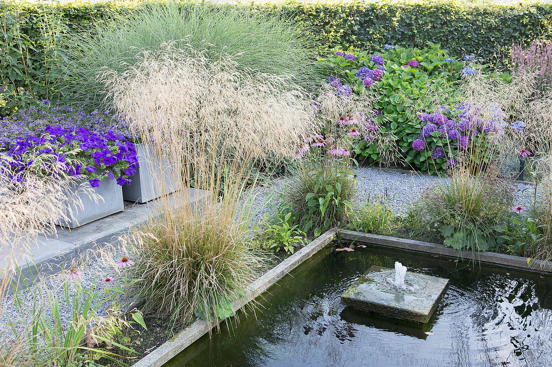Verschiedene Pflanzen am Teich mit Umrandung und Wasserspiel