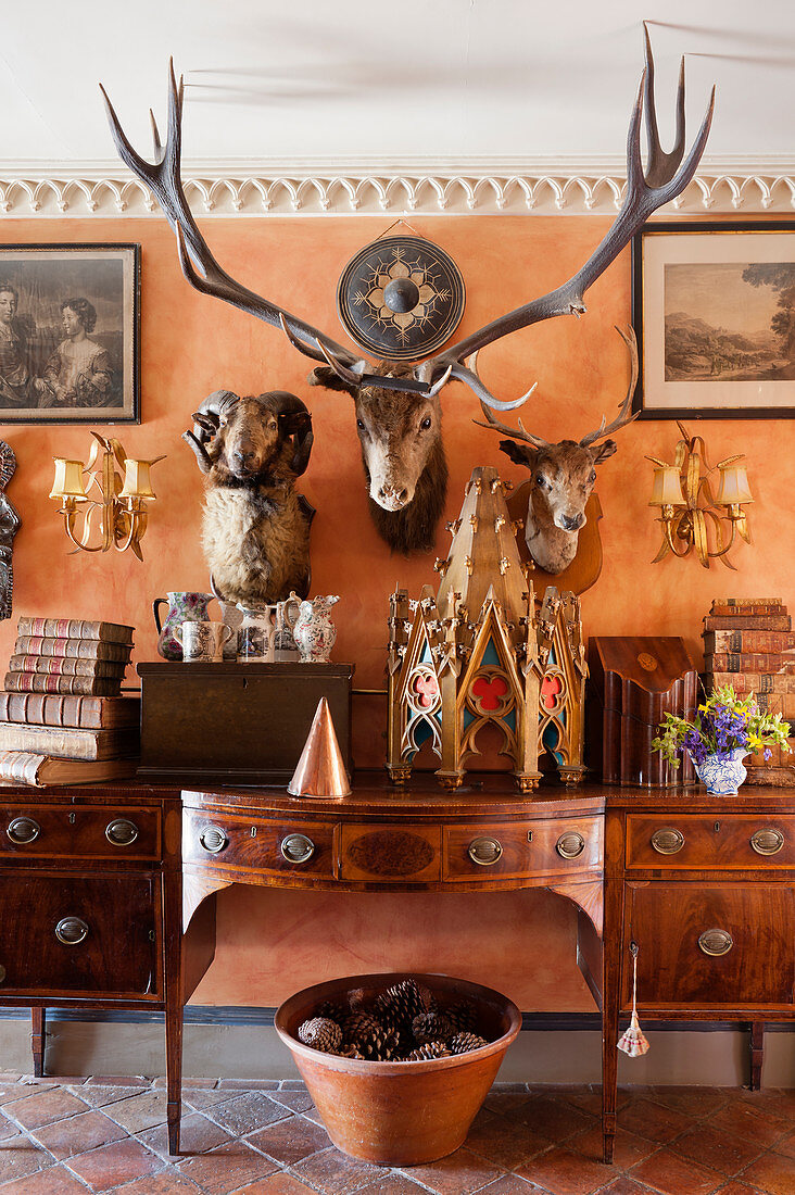 Stuffed hunting trophies on wall above antique wooden sideboard in hallway