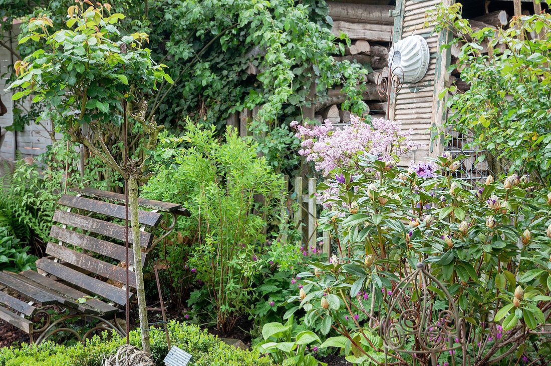 Garden bench between trees, old window shutter with baking tin as decoration
