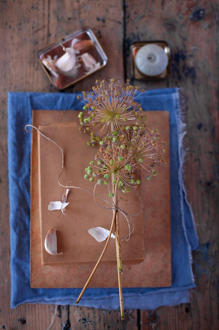 Dried garlic flowers tied together and garlic bulbs on cardboard box