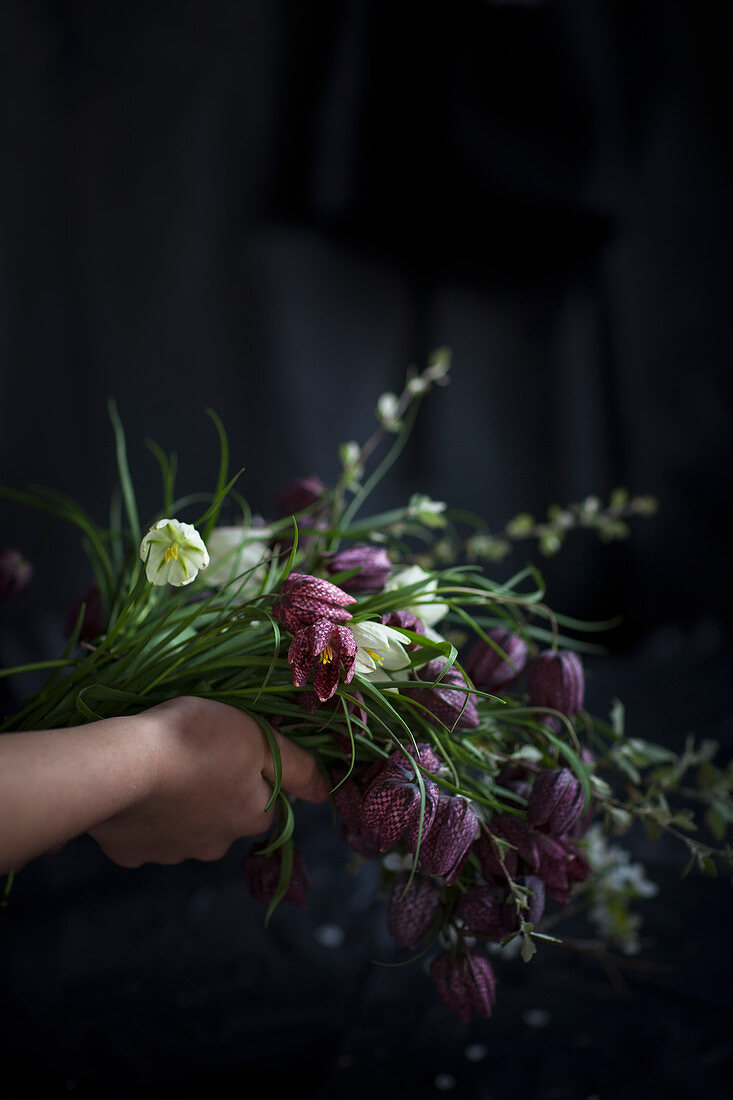 Hand holding bouquet of snake's head fritillaries