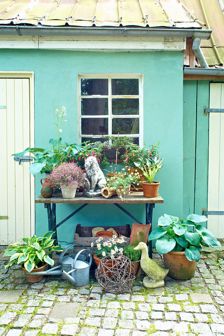 Plants and vintage accessories on and in front of table outside green house