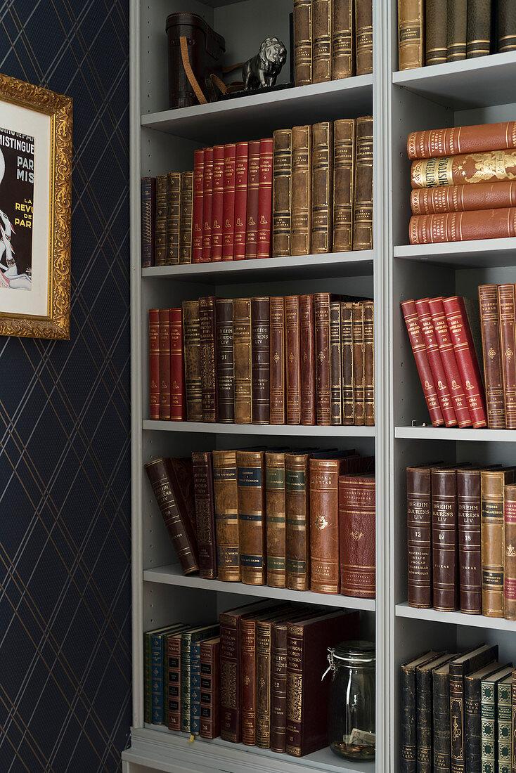 Old books on shelves next to dark blue, diamond-patterned wallpaper
