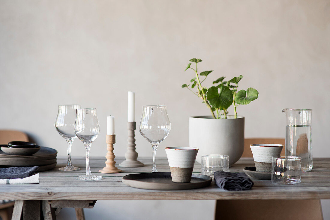 Wine glasses, beakers, houseplant and candles on rustic wooden table