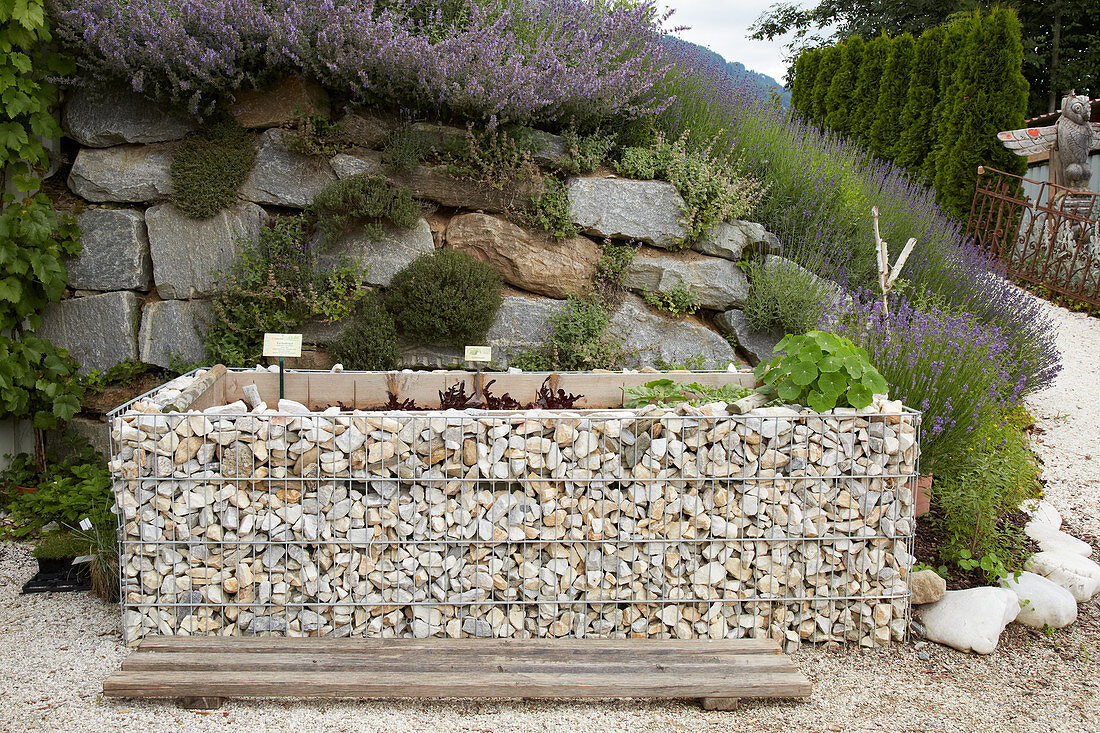 Raised bed made from gabions in front of rugged stone wall on slope