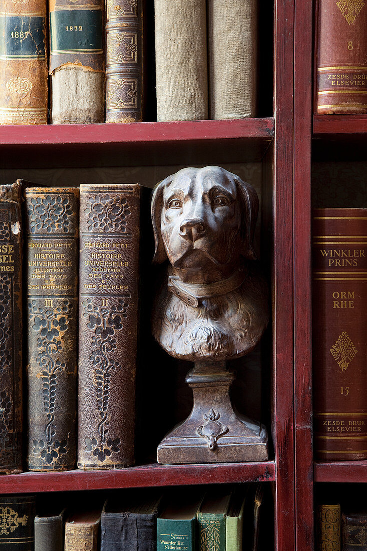 Antiquarian books and bust of dog on book shelves