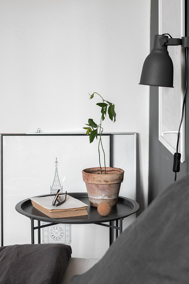 Houseplant and book on bedside table below reading lamp in bedroom