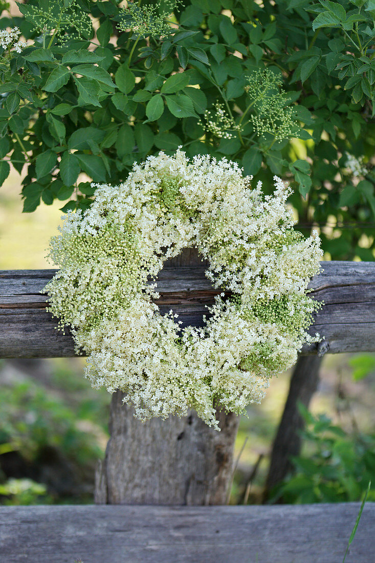 White wreath of elderflowers