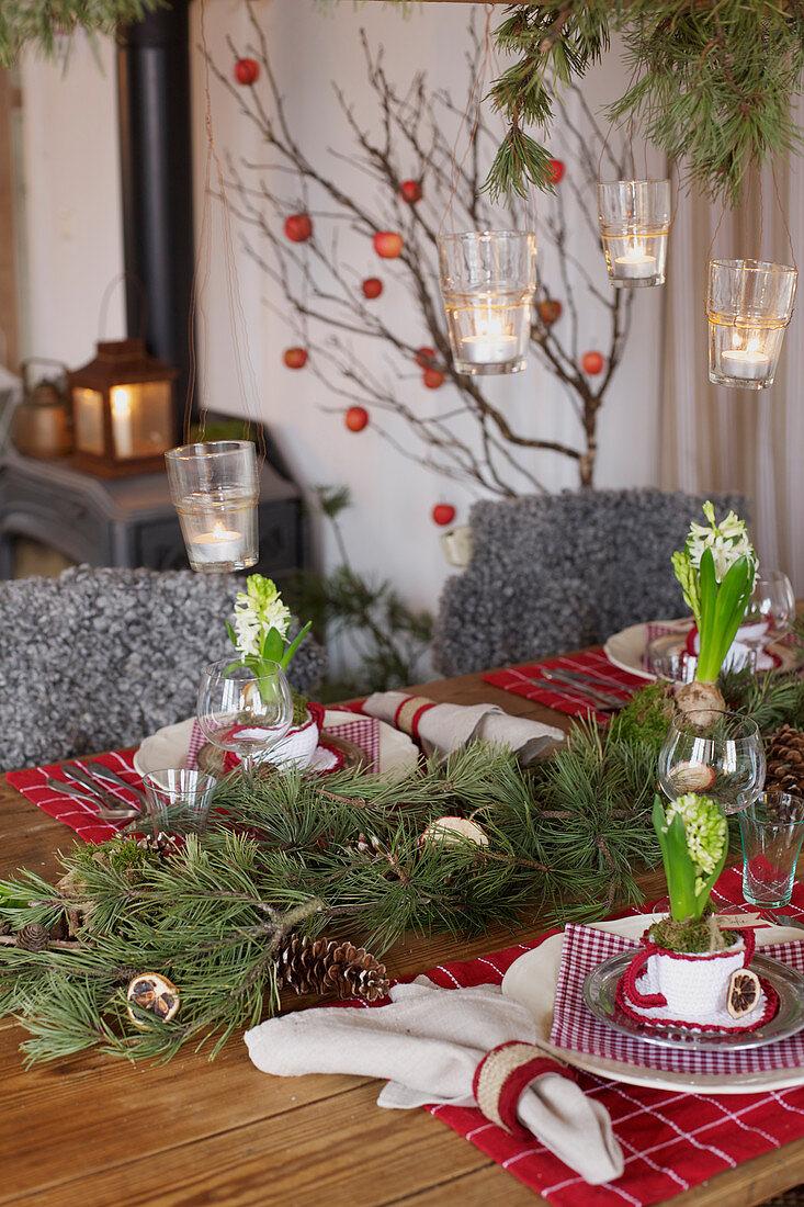 Weihnachtstisch mit Tannenzweigen und Hyazinthen dekoriert