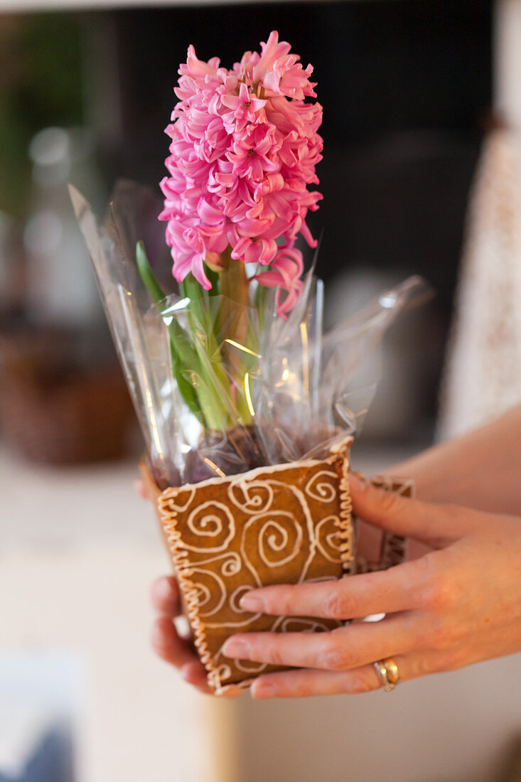 Decorated gingerbread cups with hyacinth