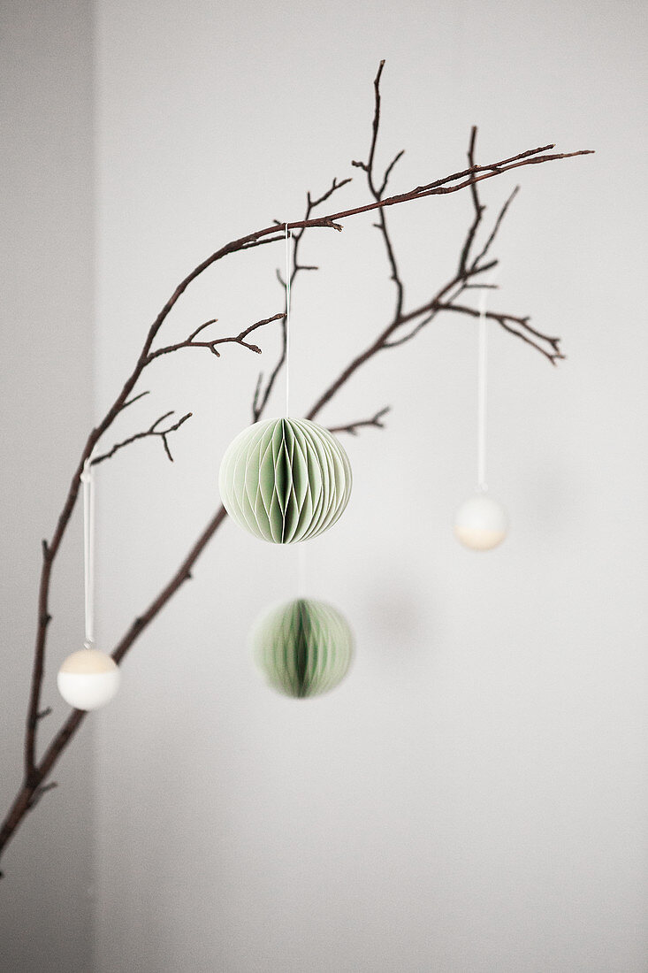 Christmas decorations hanging from branch
