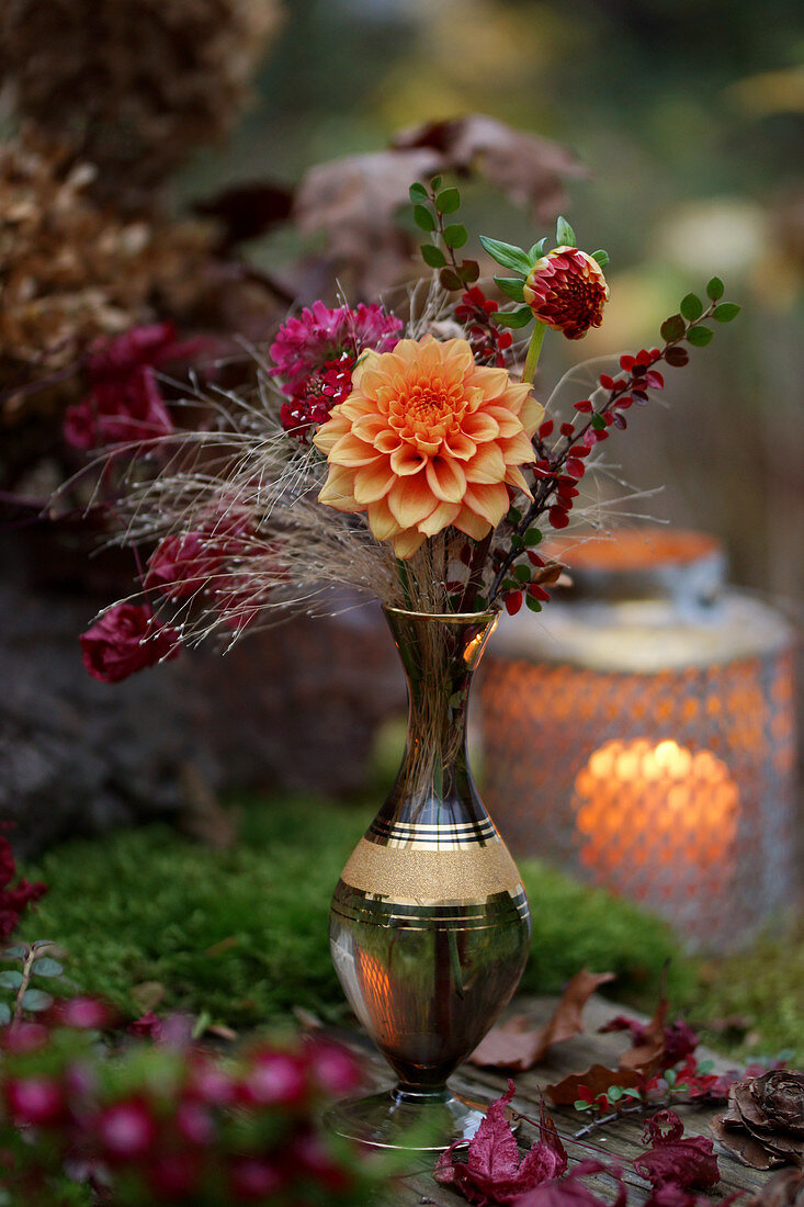 Dahlias, sprigs of leaves and scabious in vase